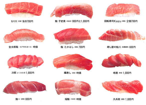 Toro for Sushi fish names